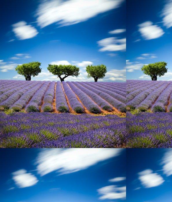 Vinylová Tapeta Lavande Provence Francie / levandule pole v Provence, Francie - Témata