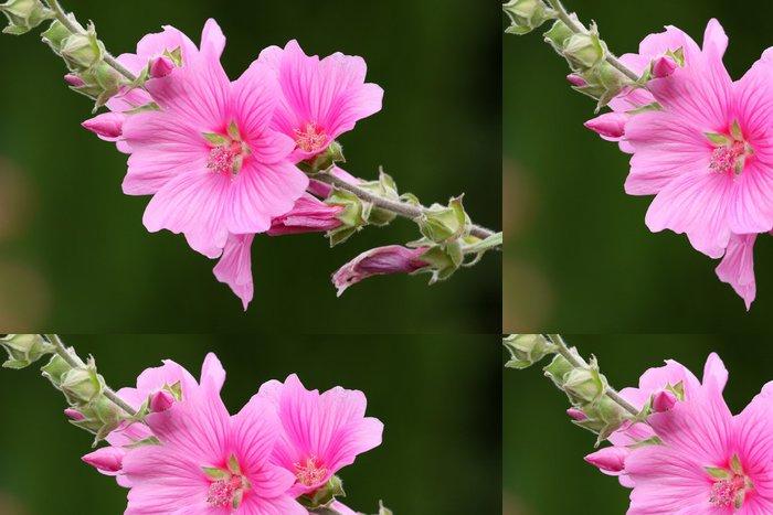 Tapeta Pixerstick Lavatère arbustive - Květiny