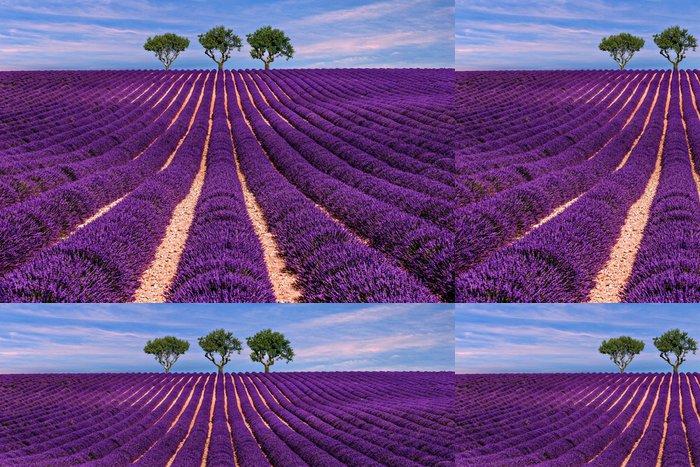 Tapeta Pixerstick Lavender pole Letní západ slunce krajina se stromem - Krajiny