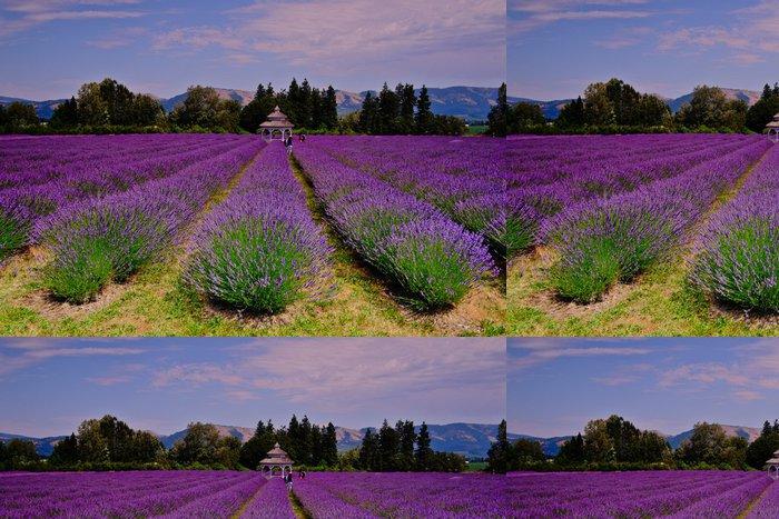 Tapeta Pixerstick Lavender Valley - Témata