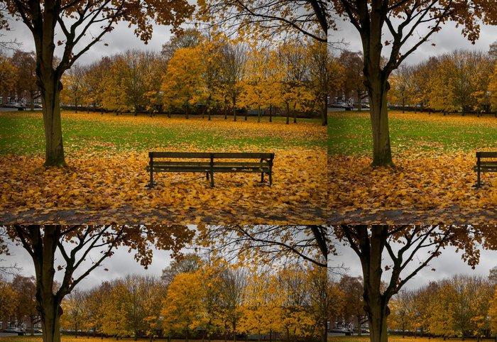 Tapeta Pixerstick Lavice podzimní listí - Roční období