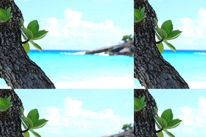 Tapeta Pixerstick Leaf u moře - Pozadí