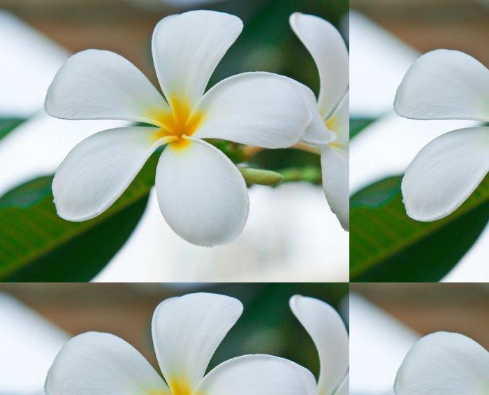 Tapeta Pixerstick Leelawadee Flower - Květiny