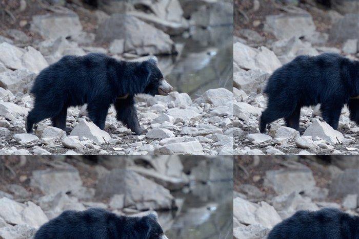 Tapeta Pixerstick Lenost medvěd chůzi v křoví. - Savci