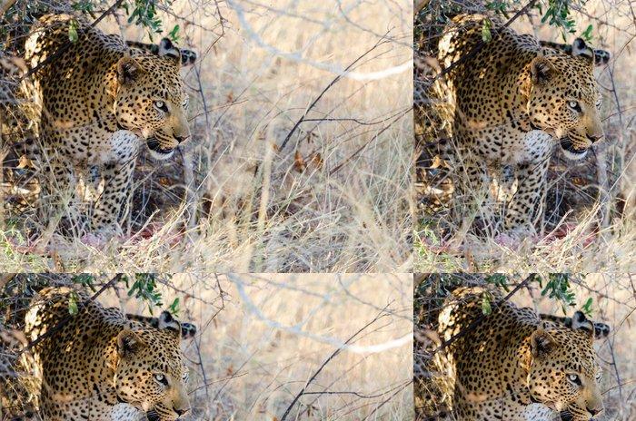 Vinylová Tapeta Leopard (Panthera pardus), s jeho zabití pod stromem - Savci