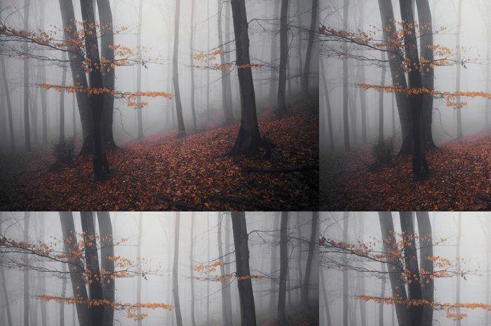 Vinylová Tapeta Les na podzim s oranžové listy na stromech i na zemi - Lesy