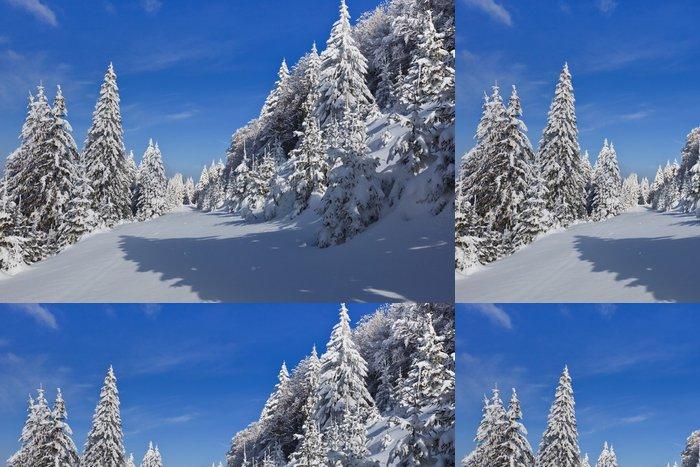 Vinylová Tapeta Les s borovic v zimě - Roční období