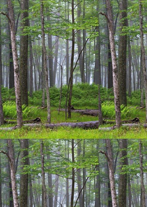 Tapeta Pixerstick Les Sullivan County, New York State - Venkov