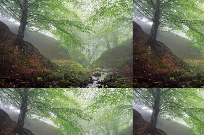 Tapeta Pixerstick Lesa s mlhou a proudu - Lesy