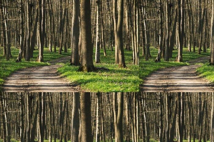 Tapeta Pixerstick Lesní cesta terén close-up pozadí - Roční období