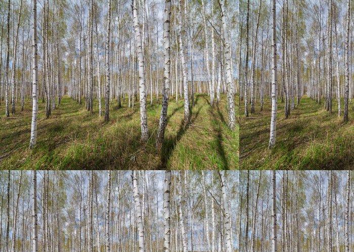 Tapeta Pixerstick Lesní krajina - Témata