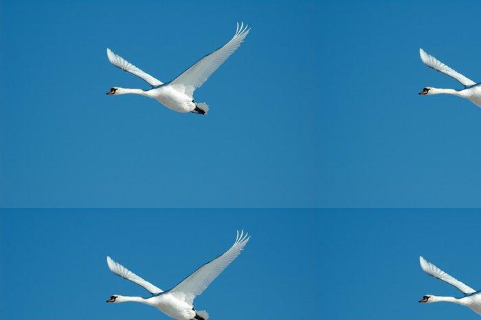 Tapeta Pixerstick Létající Swan - Ptáci