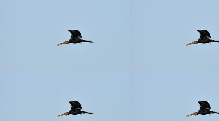 Tapeta Pixerstick Létající Tropický pták Darter - Ptáci