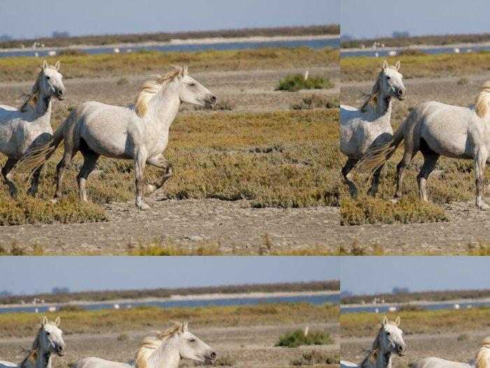 Tapeta Pixerstick Letící bílých koní s plameňáky v zádech ve Francii - Savci