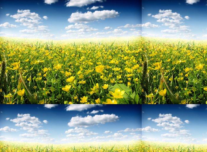 Tapeta Pixerstick Letní květy - Zemědělství