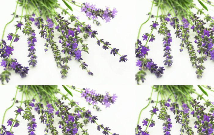 Vinylová Tapeta Levandule - Květiny