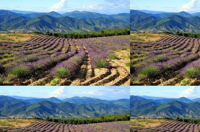 Tapeta Pixerstick Levandulová pole. Provence, Francie - Francie