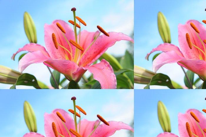 Tapeta Pixerstick Lilie 3 - Květiny