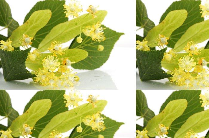 Tapeta Pixerstick Linden květiny - Zdraví a medicína
