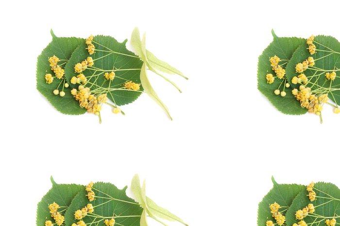 Tapeta Pixerstick Linden květy a listy - Květiny