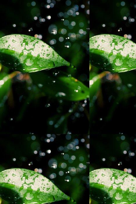 Tapeta Pixerstick Listy a kapky vody létat ve vzduchu - Přírodní krásy