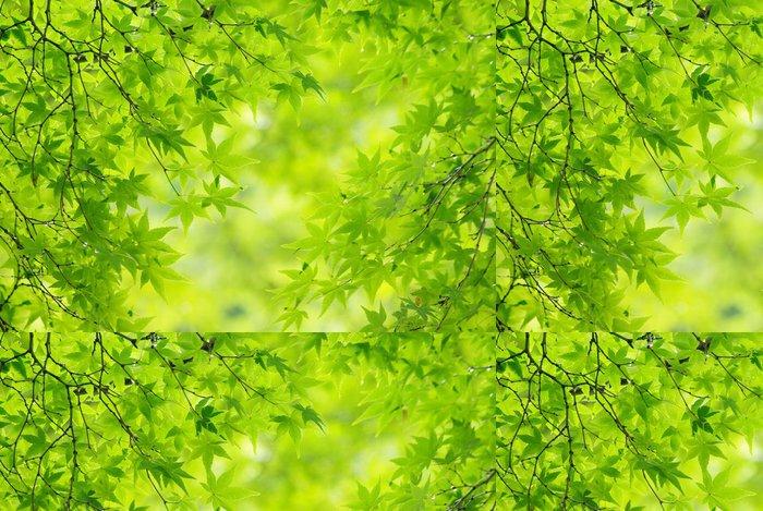 Tapeta Pixerstick Listy čerstvé zelené - Témata