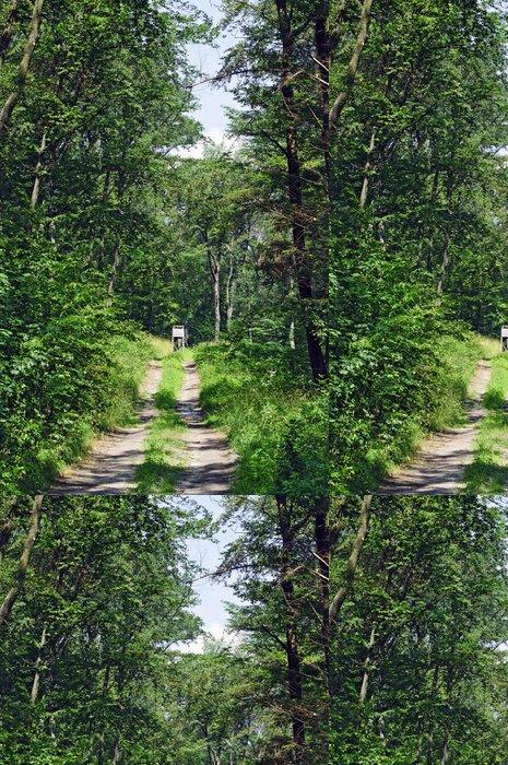 Tapeta Pixerstick Lov stojan v lese - Venkov