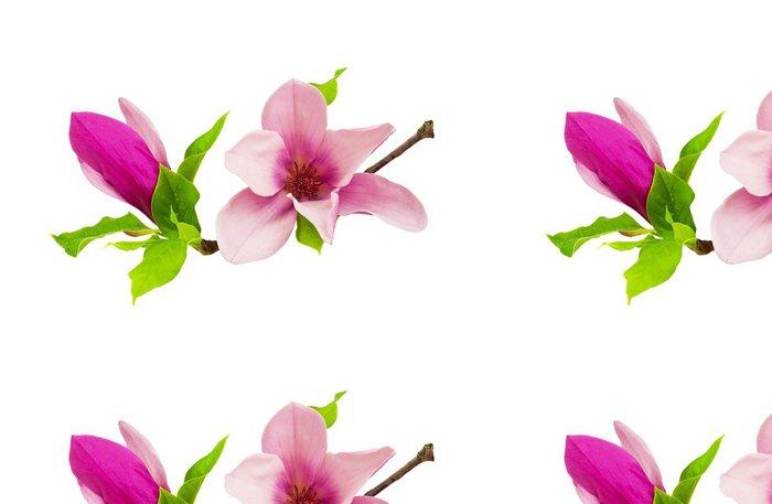 Tapeta Pixerstick Magnolie - Květiny