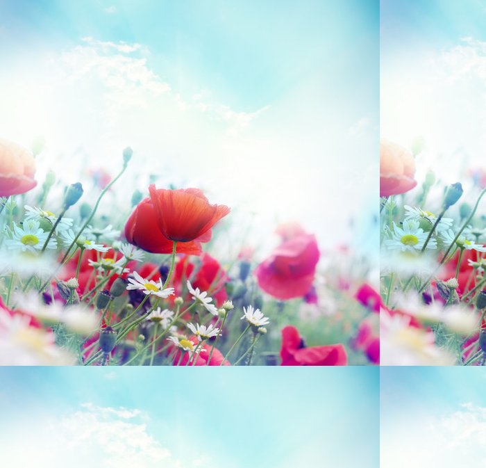 Tapeta Pixerstick Mák květiny - Květiny