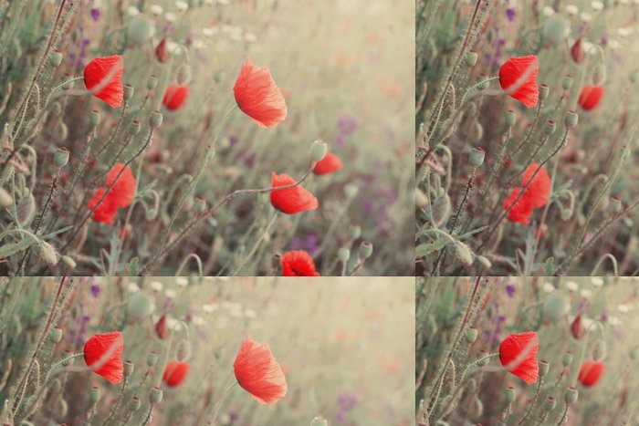 Tapeta Pixerstick Mák květiny - Témata
