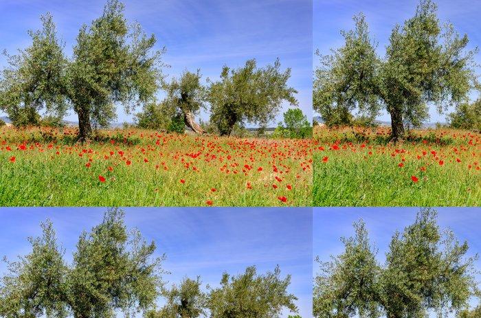 Tapeta Pixerstick Mák v poli poblíž AGRES v provincii Valencia, Španělsko - Evropa