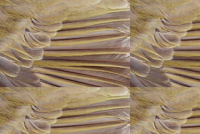 Tapeta Pixerstick Makro pták peří - Ptáci