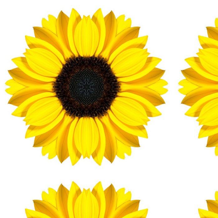 Tapeta Pixerstick Mandala Slunečnice Květina kaleidoskop izolovaných na bílém - Květiny