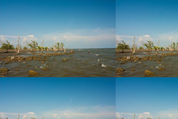 Vinylová Tapeta Mangrove na pláži - Voda