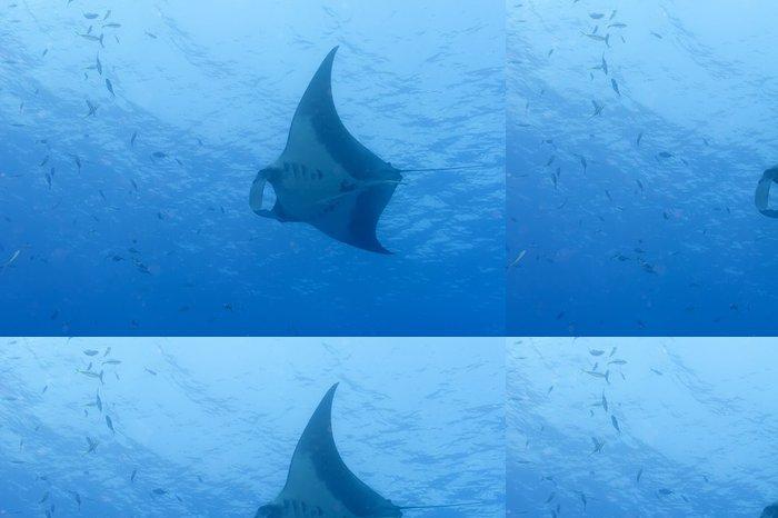 Tapeta Pixerstick Manta v hluboké modré moře - Vodní a mořský život