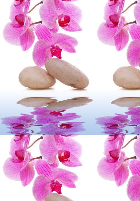 Tapeta Pixerstick Masážní kameny s Orchid - Životní styl, péče o tělo a krása