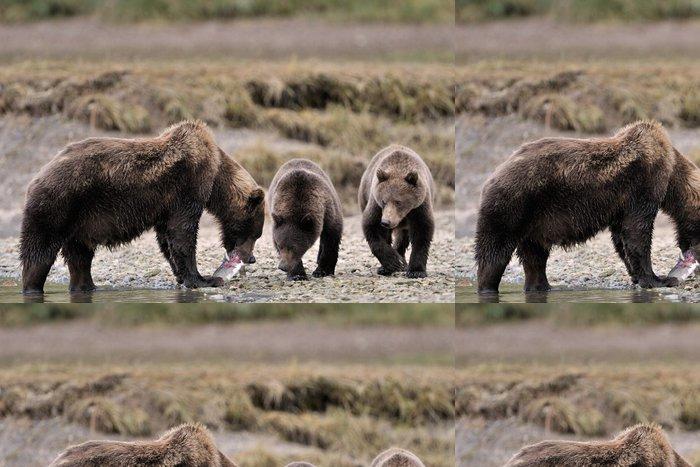 Tapeta Pixerstick Matka Grizzly Bear se dvěma mláďata krmit ryby. - Témata