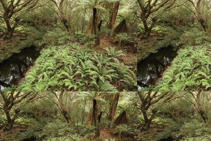 Tapeta Pixerstick McKenzie River Rainforest Walk, Victoria, Austrálie - Oceánie