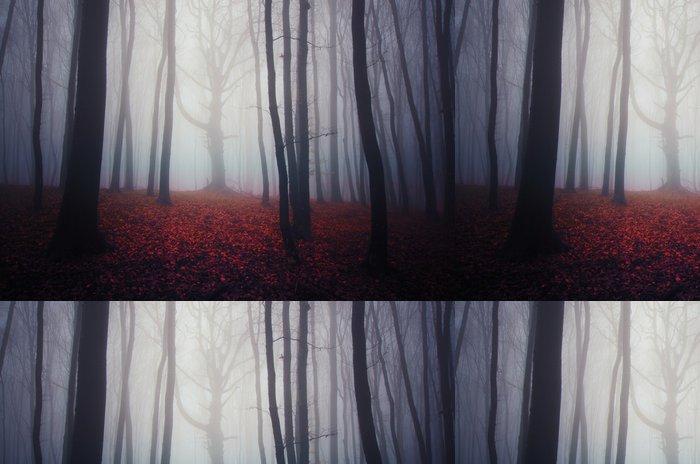 Tapeta Pixerstick Misty lesní krajina s barevnými listy na zemi - Jiné