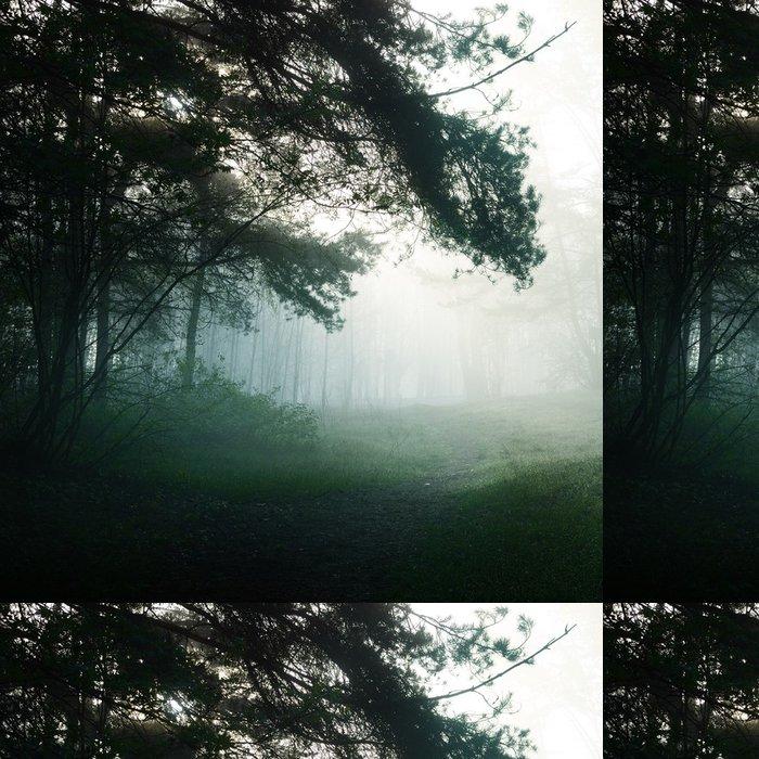 Vinylová Tapeta Mlha v lese - Témata