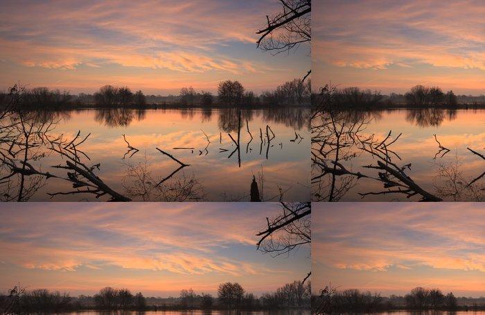 Tapeta Pixerstick Mlhavé svítání u malého rybníka. - Roční období