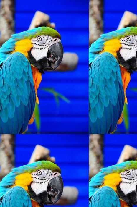 Tapeta Pixerstick Modrá a žlutá papoušek - Témata