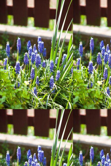 Tapeta Pixerstick Modřenec květiny - Květiny