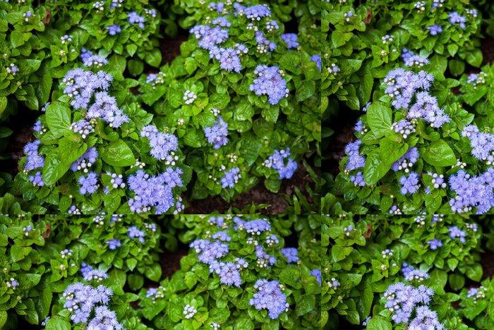 Tapeta Pixerstick Modrý květ - Rostliny