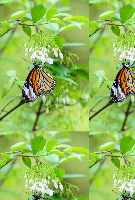 Tapeta Pixerstick Motýl krmení na pyl - Ostatní Ostatní