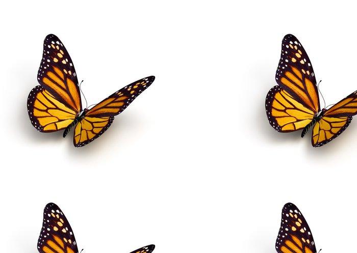Tapeta Pixerstick Motýl - Ostatní Ostatní