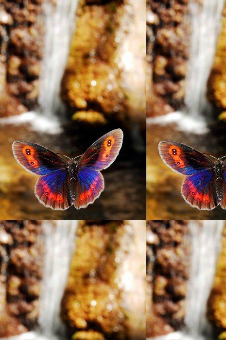 Tapeta Pixerstick Motýl - Témata