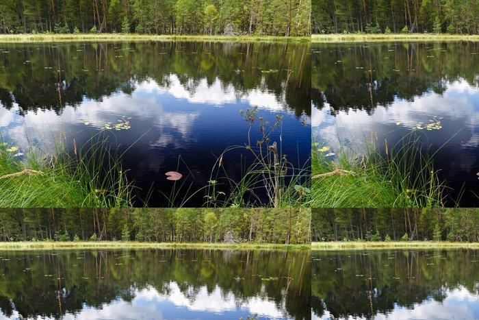 Tapeta Pixerstick Mraky odraz v jezeře poblíž národního parku - Voda