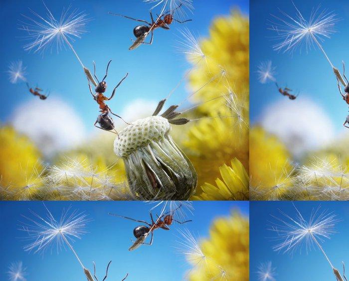 Tapeta Pixerstick Mravenci létající deštníky - semena pampelišky, ant příběhy - Imaginární zvířata