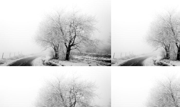 Tapeta Pixerstick Mrazivý stromy na blátivé cesty - Roční období